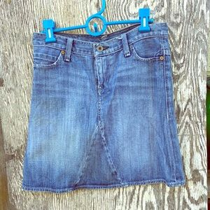 Vintage E Sam Denim Skirt No 69